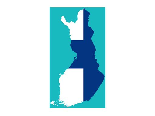 Finnish SEO